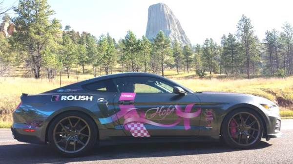 TeamRoehl Supports Cruise for a Cause Teaser